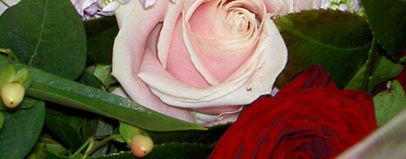 Bouquet3crop.jpg