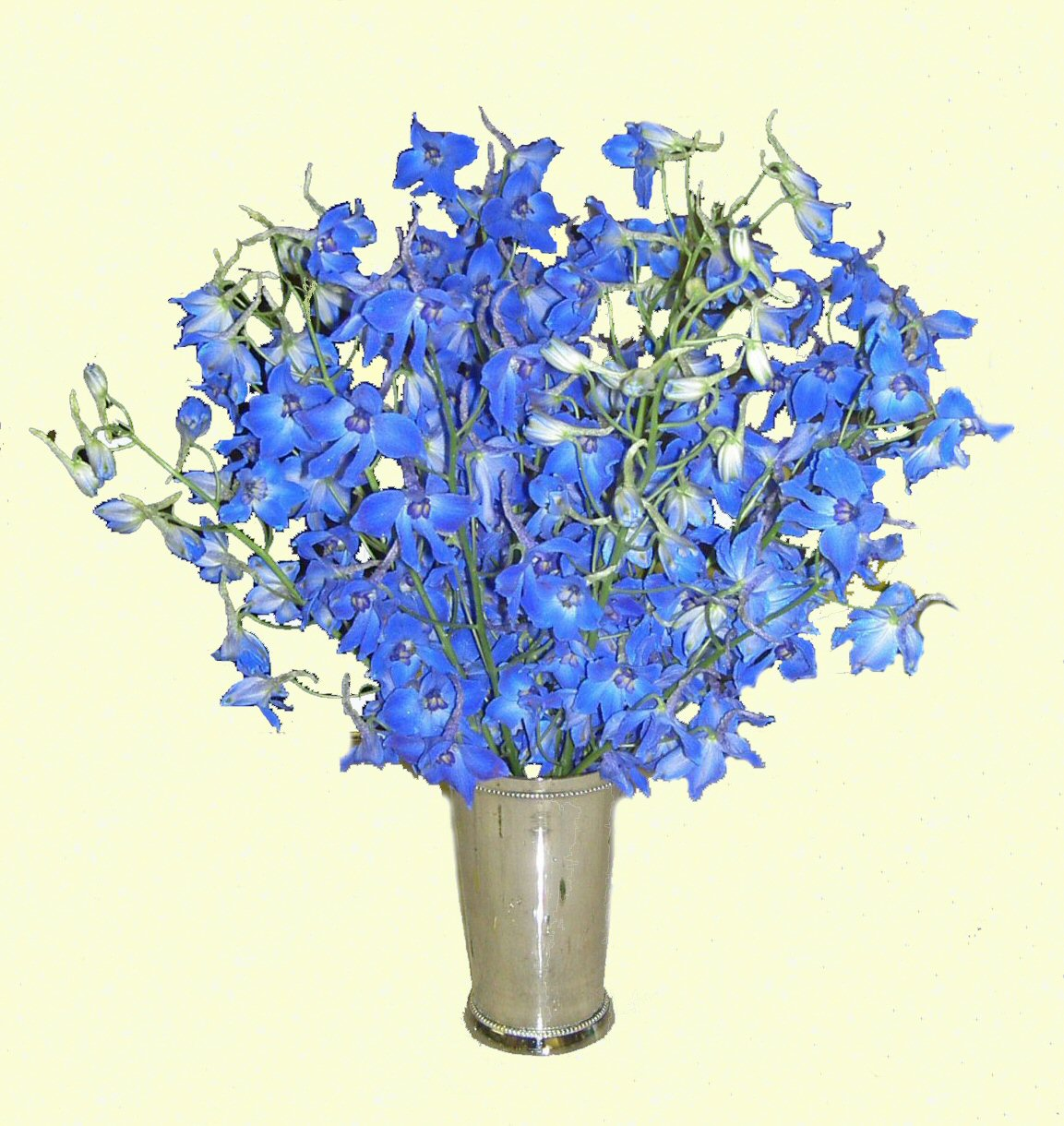 Delphinium_Occasional_Table_Arrangement_in_Silver_Beaker.jpg